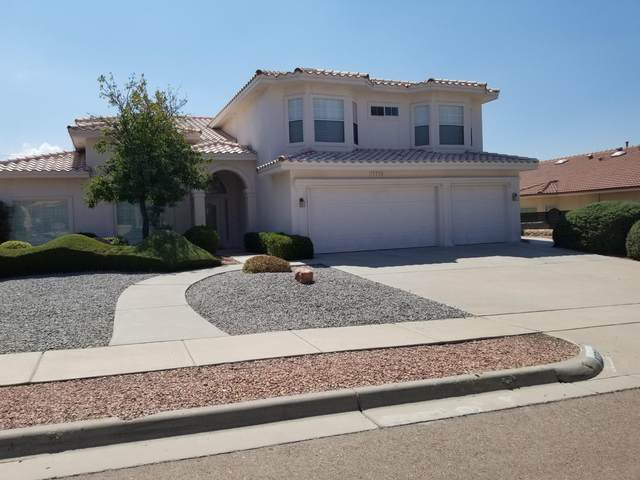 12234 Coral Gate Dr Drive, El Paso, TX 79936 (MLS #833351) :: The Matt Rice Group