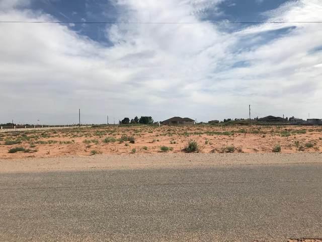14625 H. Derringer Road, Clint, TX 79938 (MLS #833408) :: The Matt Rice Group