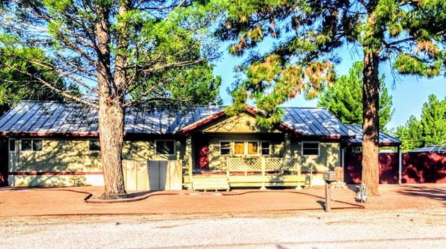 7305 Wildcat Drive, Canutillo, TX 79835 (MLS #833452) :: The Matt Rice Group