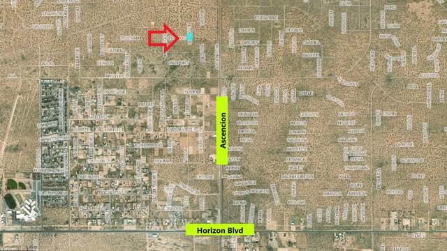 0 Dorloo, Horizon City, TX 79928 (MLS #833464) :: Jackie Stevens Real Estate Group brokered by eXp Realty