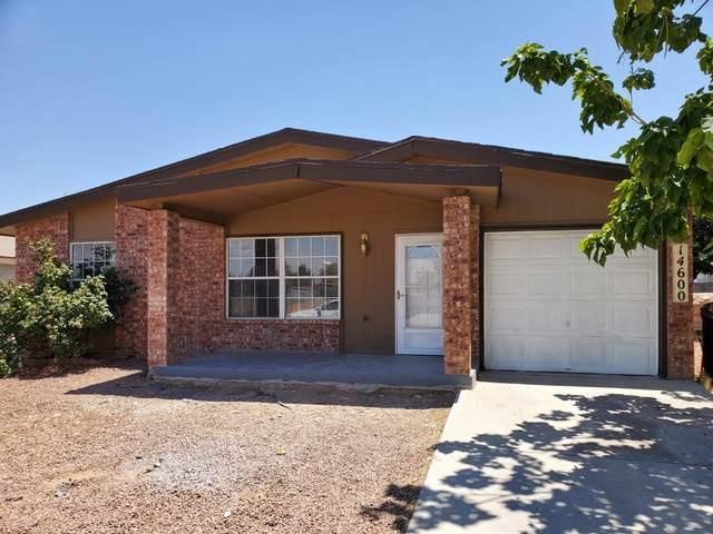 14600 Alcon Drive, Horizon City, TX 79928 (MLS #833540) :: Mario Ayala Real Estate Group