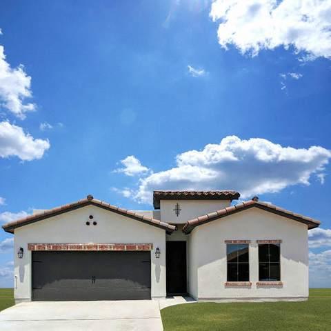 13831 Paseo De Plata Drive, El Paso, TX 79928 (MLS #833689) :: The Purple House Real Estate Group