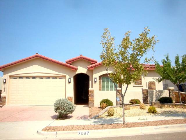 7237 High Plains Drive, El Paso, TX 79911 (MLS #833700) :: Mario Ayala Real Estate Group