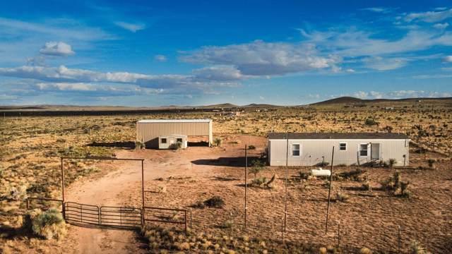 19306 Jay R. Vargas, El Paso, TX 79938 (MLS #833806) :: Jackie Stevens Real Estate Group brokered by eXp Realty
