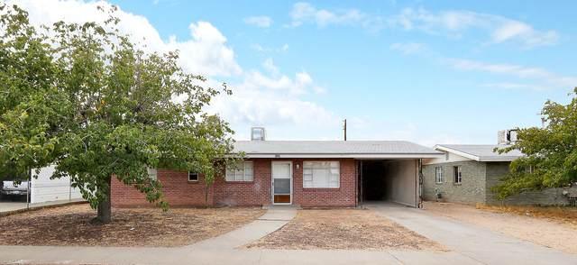 9309 Albany Drive, El Paso, TX 79924 (MLS #833846) :: The Matt Rice Group
