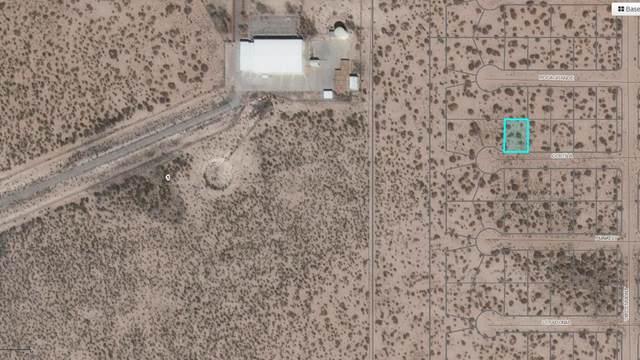 1 Costila, Horizon City, TX 79928 (MLS #833908) :: Jackie Stevens Real Estate Group brokered by eXp Realty