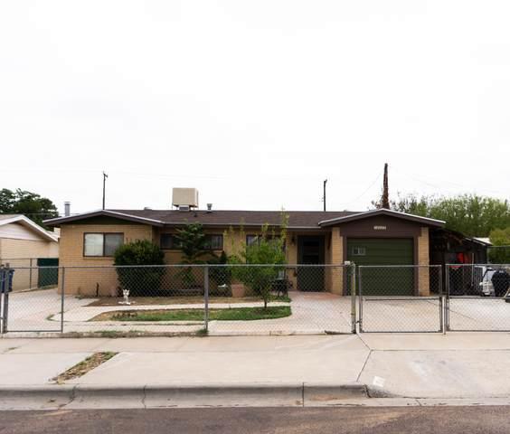 10025 Oakwood Drive, El Paso, TX 79924 (MLS #833935) :: The Matt Rice Group