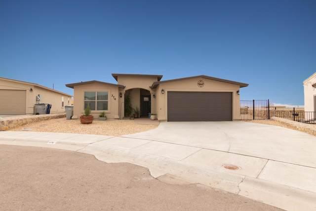 374 Aidan Gordon Circle, El Paso, TX 79932 (MLS #833946) :: Mario Ayala Real Estate Group
