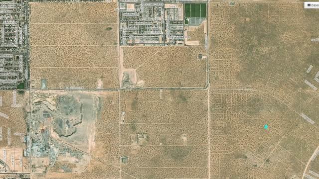 5 Vernamont, El Paso, TX 79938 (MLS #833962) :: The Matt Rice Group