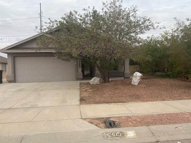 14305 Desert Orchid Drive, Horizon City, TX 79928 (MLS #834009) :: The Purple House Real Estate Group