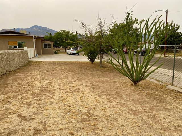 4976 Winthrop Drive, El Paso, TX 79924 (MLS #834046) :: The Purple House Real Estate Group