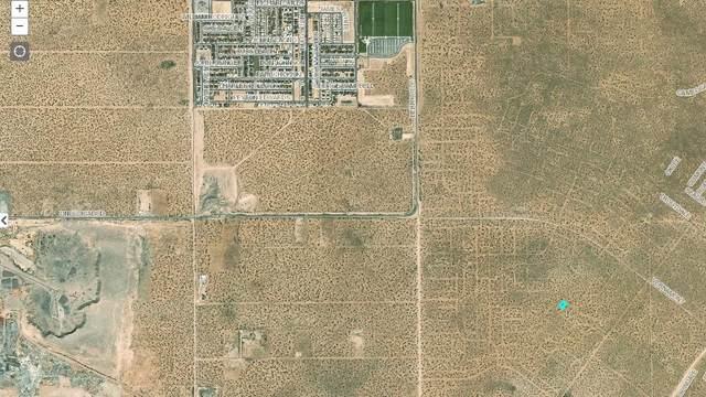 7 Vernamont, El Paso, TX 79938 (MLS #834070) :: The Matt Rice Group