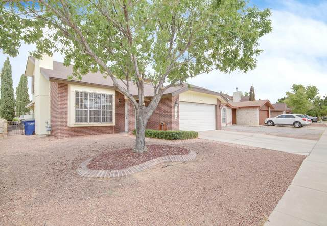 11949 Oak Abbey Court, El Paso, TX 79936 (MLS #834075) :: The Matt Rice Group