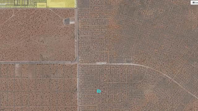 11 Berryville, El Paso, TX 79928 (MLS #834098) :: Mario Ayala Real Estate Group