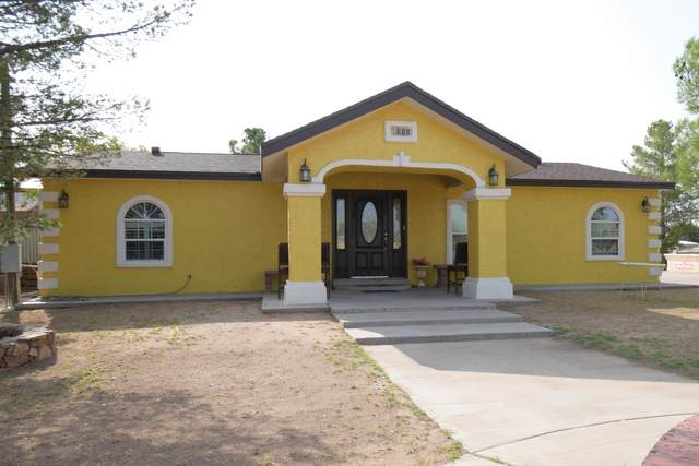 888 Alison Drive, Socorro, TX 79927 (MLS #834119) :: Preferred Closing Specialists