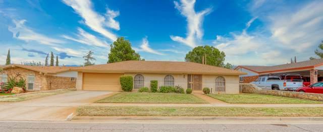 10537 Texwood Avenue, El Paso, TX 79925 (MLS #834130) :: The Matt Rice Group