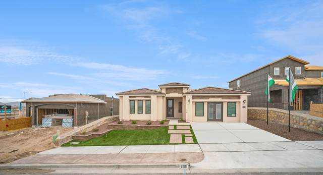 888 Crystal Deer Drive, El Paso, TX 79928 (MLS #834162) :: Jackie Stevens Real Estate Group brokered by eXp Realty