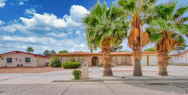 10720 Aldama Court, El Paso, TX 79935 (MLS #834196) :: Mario Ayala Real Estate Group