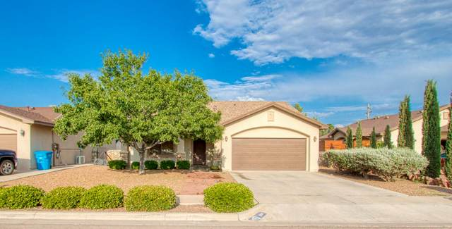 1019 Chris Forbes Circle, Socorro, TX 79927 (MLS #834218) :: The Purple House Real Estate Group