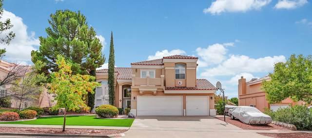 6220 Brisa Del Mar Drive, El Paso, TX 79912 (MLS #834228) :: Mario Ayala Real Estate Group