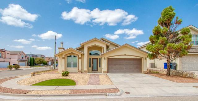 12561 Paseo Alegre Drive, El Paso, TX 79928 (MLS #834232) :: The Matt Rice Group