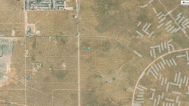 12 Berryville, El Paso, TX 79928 (MLS #834249) :: Mario Ayala Real Estate Group