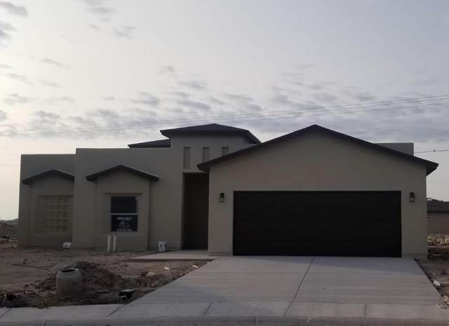 11681 Flor Freesia Drive, Socorro, TX 79927 (MLS #834252) :: The Matt Rice Group