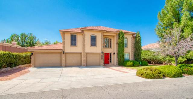 425 Wild Willow, El Paso, TX 79922 (MLS #834296) :: Mario Ayala Real Estate Group