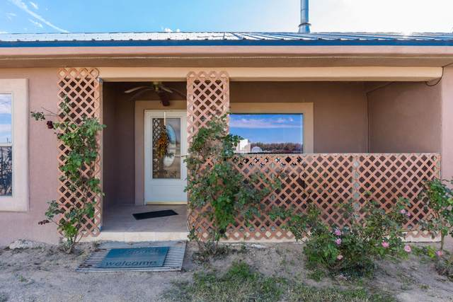 202 Hallas Road, Anthony, NM 88021 (MLS #834320) :: Preferred Closing Specialists