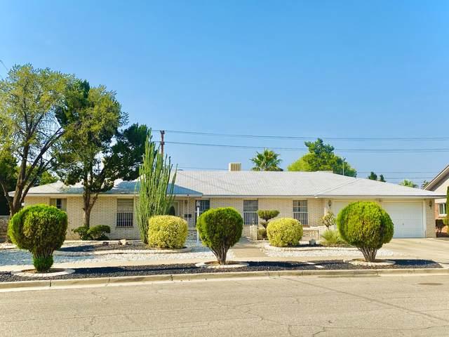 9100 Parkland Drive, El Paso, TX 79925 (MLS #834342) :: The Purple House Real Estate Group