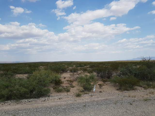 29 Undivided Acres, Sierra Blanca, TX 79851 (MLS #834345) :: Preferred Closing Specialists