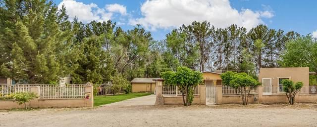 12748 Acevedo Drive, San Elizario, TX 79849 (MLS #834349) :: The Purple House Real Estate Group