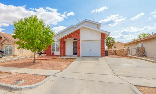 12152 Tower Hill Drive, El Paso, TX 79936 (MLS #834462) :: Jackie Stevens Real Estate Group brokered by eXp Realty