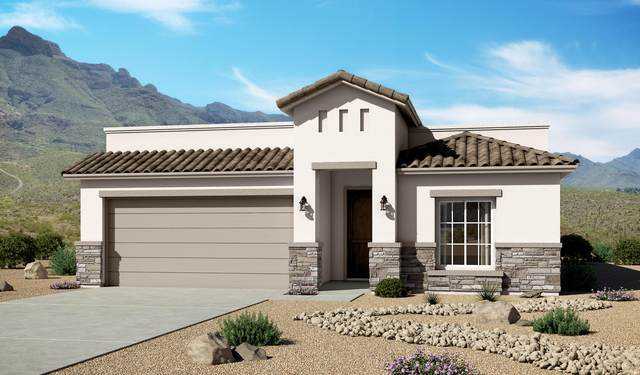 216 Ulshaw Street, El Paso, TX 79928 (MLS #834493) :: The Matt Rice Group