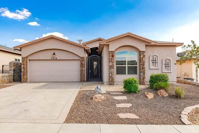 7238 Longspur, El Paso, TX 79911 (MLS #834531) :: Jackie Stevens Real Estate Group brokered by eXp Realty