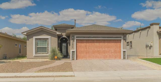 14205 Rattler Point Drive, El Paso, TX 79938 (MLS #834539) :: Jackie Stevens Real Estate Group brokered by eXp Realty