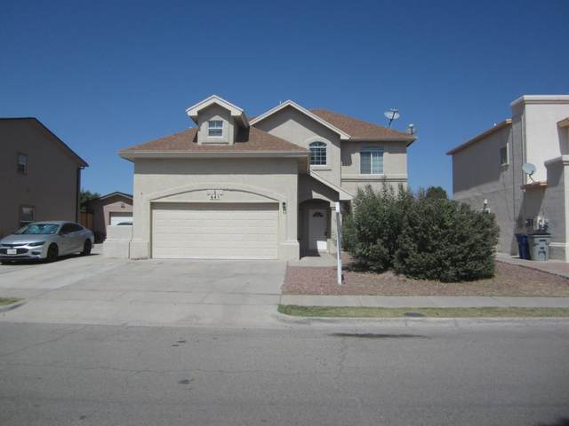 645 Laramie River Avenue, El Paso, TX 79932 (MLS #834573) :: Mario Ayala Real Estate Group