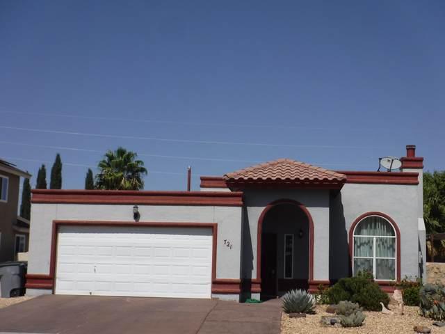 721 Dakota River Avenue, El Paso, TX 79932 (MLS #834600) :: Jackie Stevens Real Estate Group brokered by eXp Realty