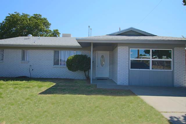 4816 Junction Avenue, El Paso, TX 79924 (MLS #834620) :: The Purple House Real Estate Group