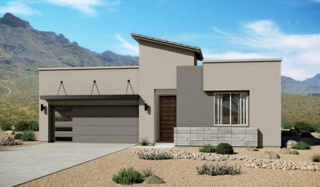 13424 Emerald Light Lane, Horizon City, TX 79928 (MLS #834641) :: Mario Ayala Real Estate Group