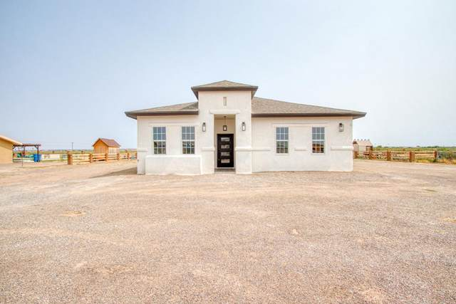 13819 Janelle Lynne Circle, San Elizario, TX 79849 (MLS #834652) :: Mario Ayala Real Estate Group