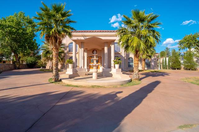 861 Country Club Road, El Paso, TX 79932 (MLS #834718) :: The Purple House Real Estate Group