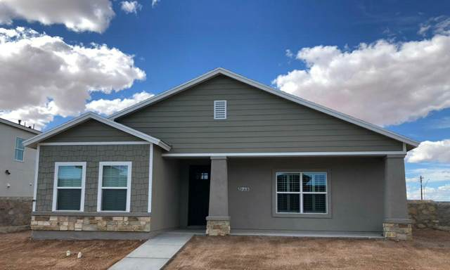 14764 Tierra Harbor Avenue, El Paso, TX 79938 (MLS #834762) :: Mario Ayala Real Estate Group