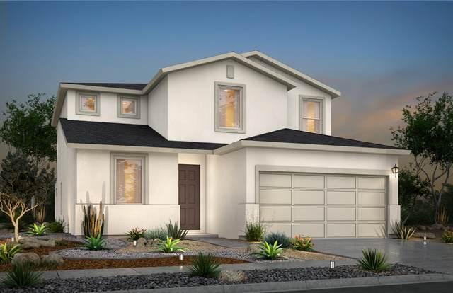 1005 Aerodyne Place, El Paso, TX 79928 (MLS #834766) :: Jackie Stevens Real Estate Group brokered by eXp Realty