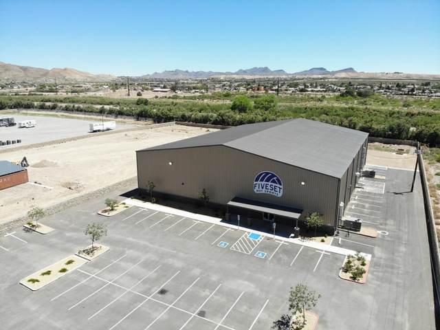 1999 Appaloosa Drive, Sunland Park, NM 88063 (MLS #834820) :: Mario Ayala Real Estate Group