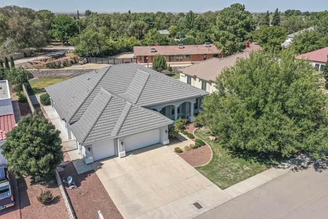5513 Last Waltz Street, El Paso, TX 79932 (MLS #835108) :: Jackie Stevens Real Estate Group brokered by eXp Realty