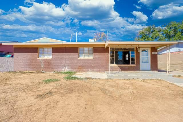 9025 Mount San Berdu Drive, El Paso, TX 79904 (MLS #835185) :: Jackie Stevens Real Estate Group brokered by eXp Realty