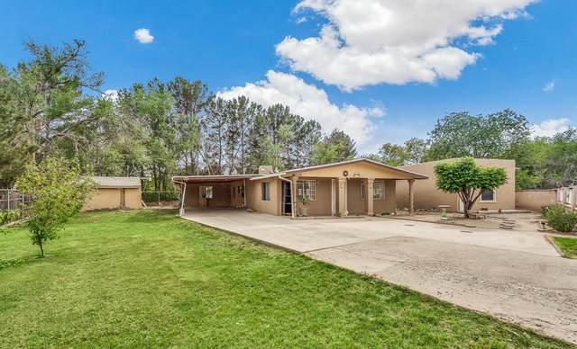12748 Acevedo Drive, San Elizario, TX 79849 (MLS #835207) :: Jackie Stevens Real Estate Group brokered by eXp Realty