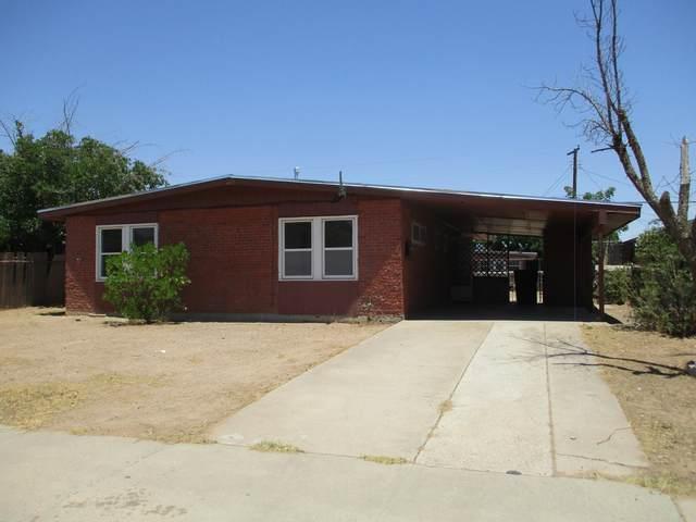 8826 Mount Elbert Drive, El Paso, TX 79904 (MLS #835209) :: Jackie Stevens Real Estate Group brokered by eXp Realty