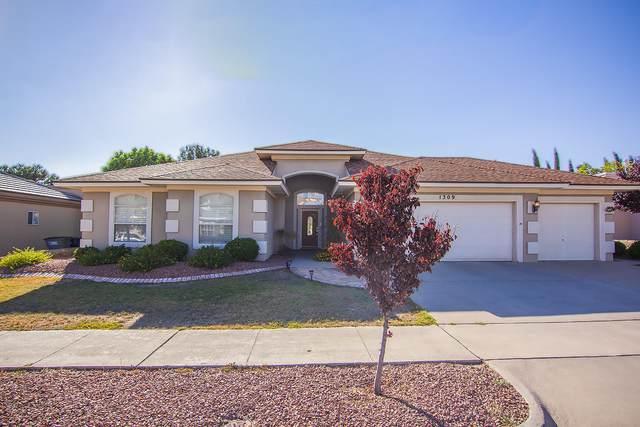 1309 Desert Canyon Drive, El Paso, TX 79912 (MLS #835231) :: Mario Ayala Real Estate Group
